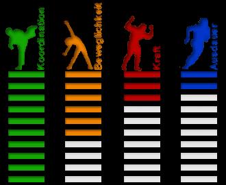 asiatische Kampfsportarten Eigenschaften