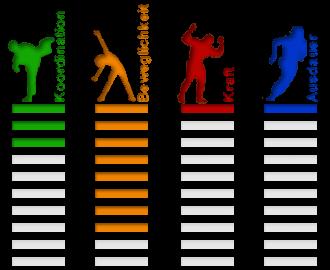 Sportart Gymnastik Eigenschaften