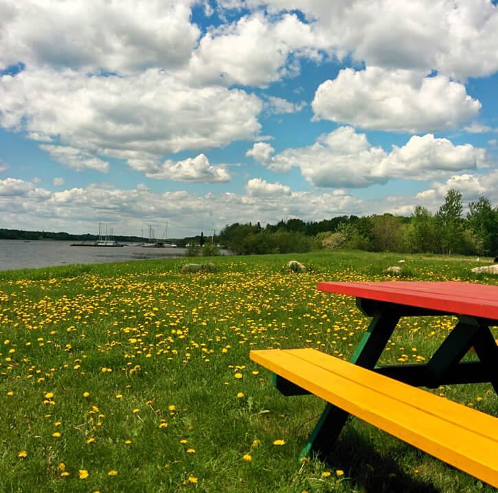 Picknick-Bank am Wasser