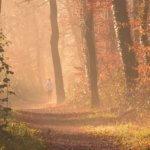 Das sollten Sie über Fitnessberater wissen – Unser Tipp für den Herbst