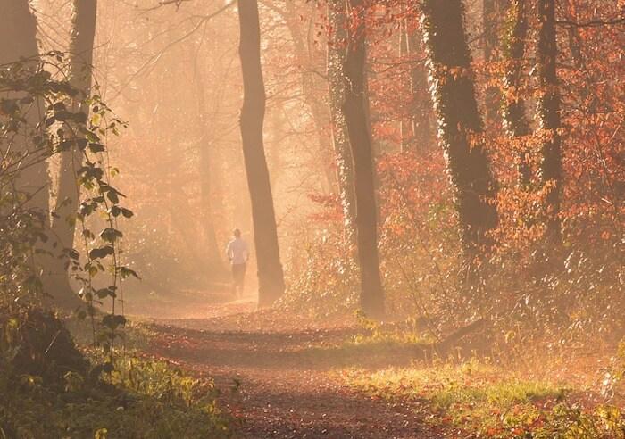 Joggen im herbstlichen Wald
